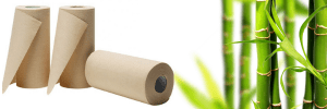 3 300x100 - Sustainable Substitutions for Eco-Friendly Living