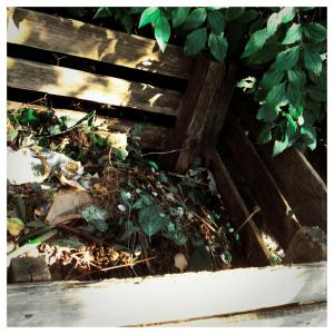 Compost 300x300 - Fun, Environmentally Friendly Gardening Activities