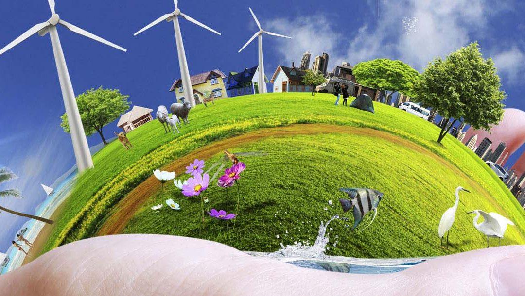 Environmental Fun Facts