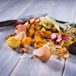 Kitchen Scraps 300x300 - Fun, Environmentally Friendly Gardening Activities