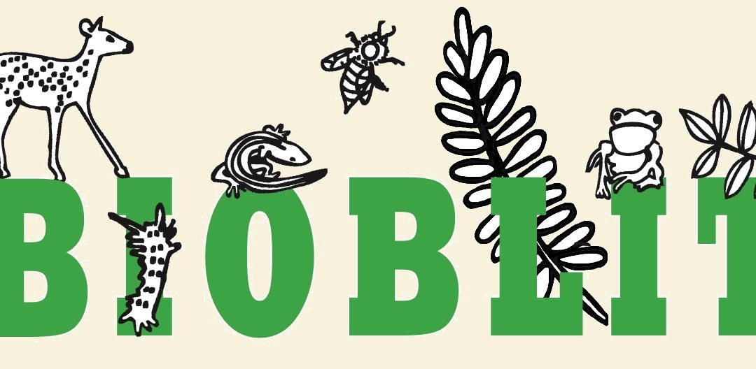 The National Park Service's BioBlitz: Both Fun and Productive!