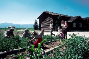 garden 300x200 - Guest Post:  Fostering Relationships Through Activity